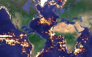 Global Fishing Watch : cet outil qui surveille les excès…