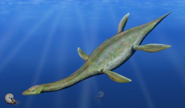 Un reptile en Antarctique il y a 150 millions d'années