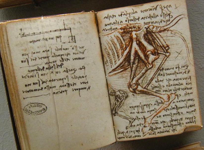 en 1482  leonard de vinci r u00e9digeait sa lettre de