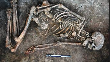 os ukraine squelette