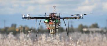 drone pollinisateur