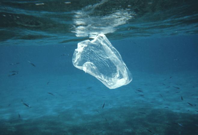 sac plastique pollution océan