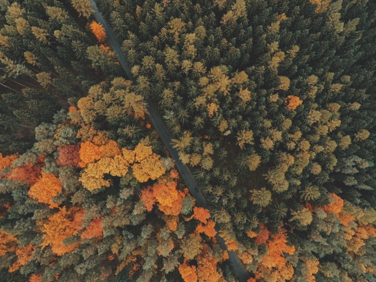 Envoyer un message privé Aerial-view-1031028_1920