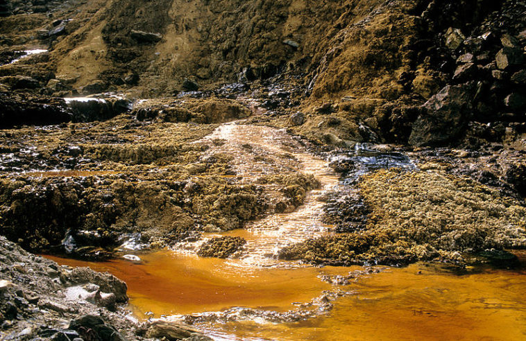 pollution sols