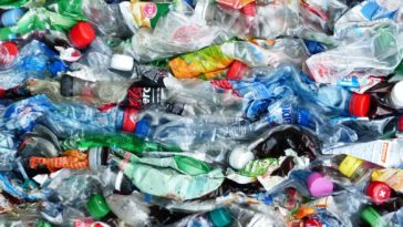 PET plastique