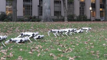mini cheetah robot MIT 2