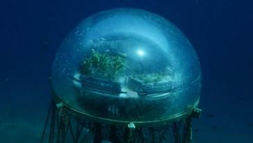 serre aquatique Némo