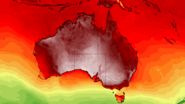 Australie canicule
