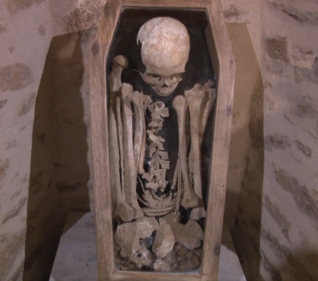 squelette Ernest