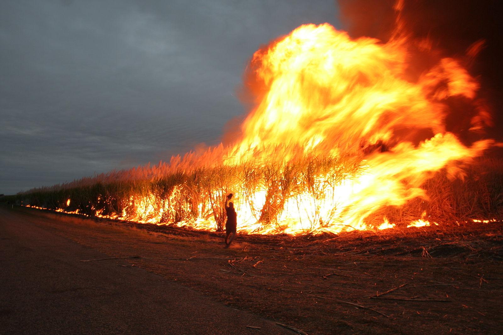 australie incendies