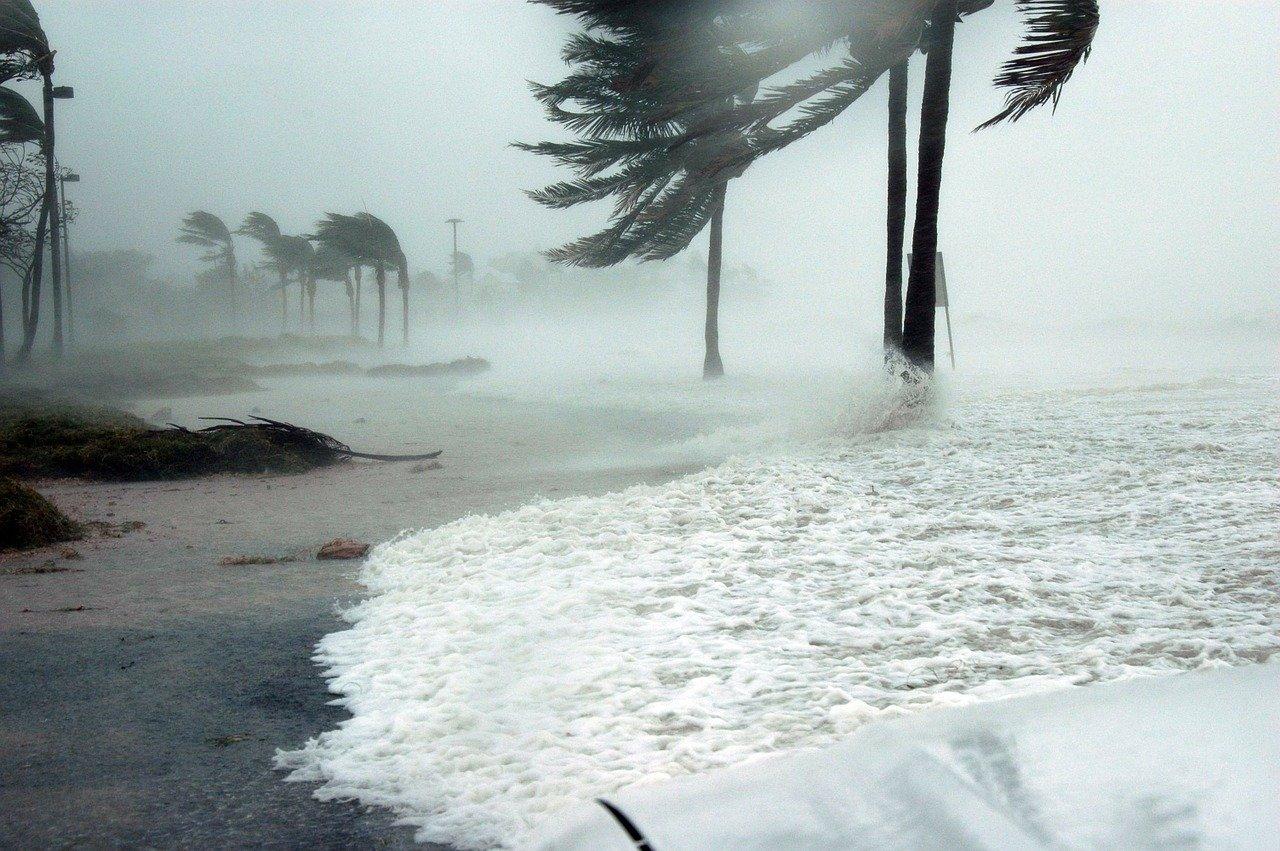 nature onu ouragan