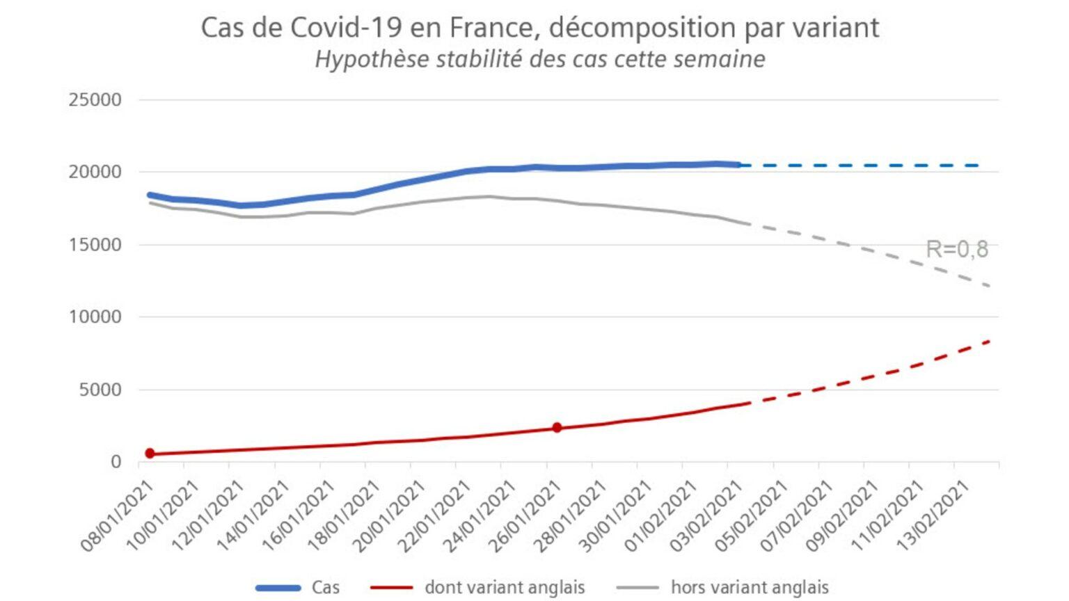 coronavirus variant France graph 4