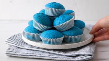 muffins bleus microbiote intestinal