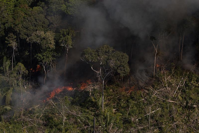 incendie Amazonie 2020